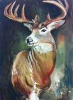 Regal Deer_ChelseaLawrick