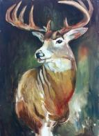 Regal Deer_ChelseaLawrick